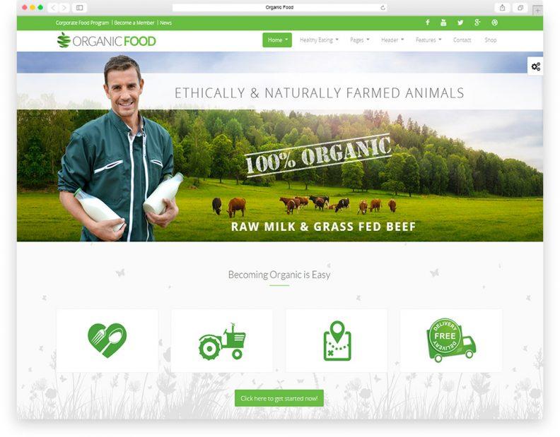 organic-food-333